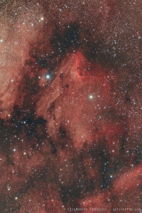 IC5070 Nebulosa Pellicano - Elisabetta Trebeschi