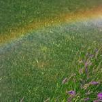 """Lo spettro elettromagnetico, ovvero la scomposizione della luce bianca nelle sue componenti """"colorate"""", è ben visibile in un arcobaleno."""