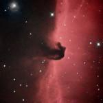 Nebulosa Testa di Cavallo - 06/03/2013